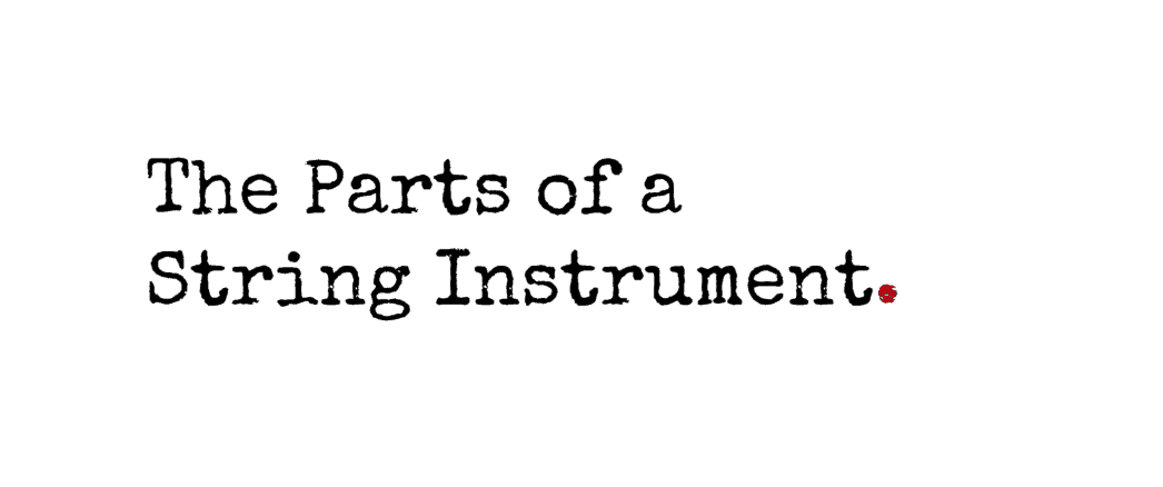 The Parts of a String Instrument