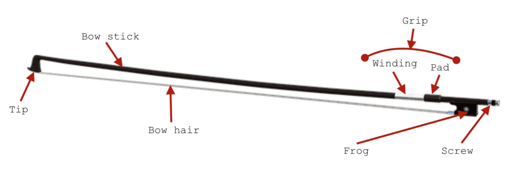 Parts of a String Instrument's Bow