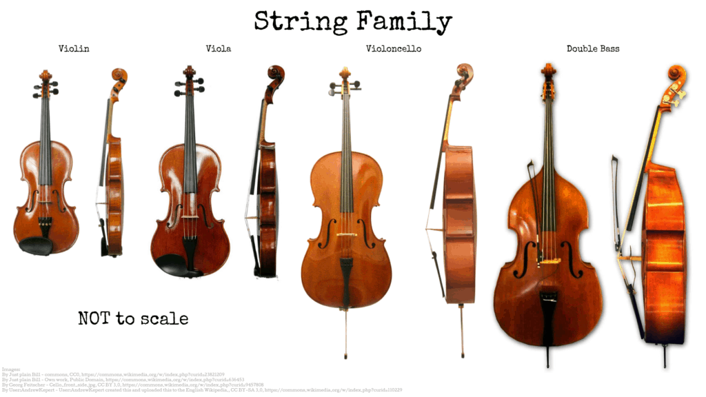 String Section Instruments